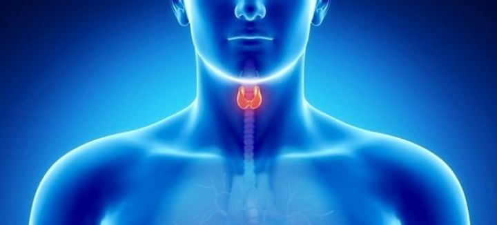What You Must Know If Your Thyroid Test Was 'Normal'