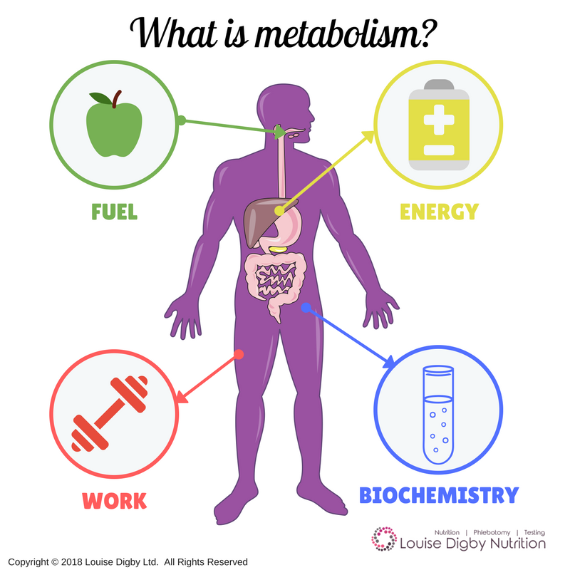 What is Metabolism? [PLUS Metabolism Boosting Recipe]